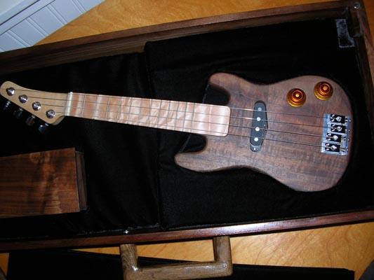 electric ukulele for sale